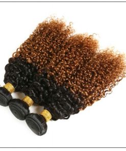 Brazilian Ombre Kinky Curly Hair Extensions