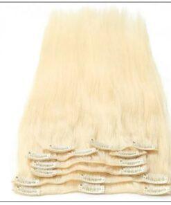 #60 Platium Blonde Clip In Hair Virgin Hair Extensions img 3-min