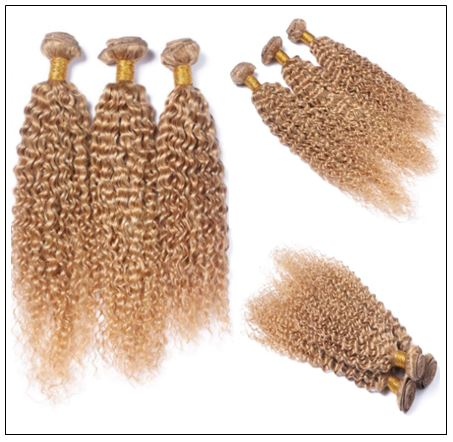 3 Bundles Kinky Curly Colour 27 Hair 4-min
