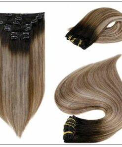 Balayage Clip in Hair Extensions 2