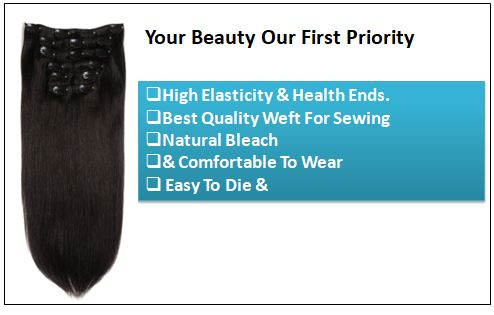Black Clip in Hair Extension (3)