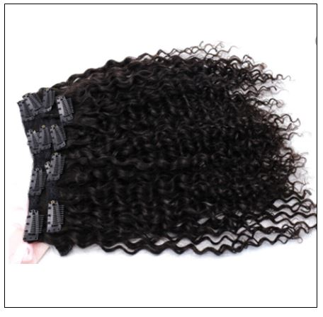 Curly Clip in Human Hair Extensions (1)