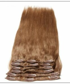 Light Brown Clip in Human Hair Extensions (1)