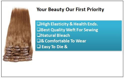 Light Brown Clip in Human Hair Extensions