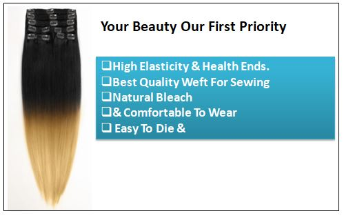 Ombre Human Hair Extensions Clip In-min